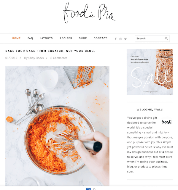 monetize blog niches, monetize a food blog wordpress themes make money food niche blogtips.com