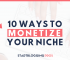 10 ways to monetize blog niches montize my niche make money from blogging bloggers starting a blog make money blogging seo startbloggingpros.com
