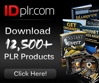 best plr websites Copyright Rules For Bloggers blog tips